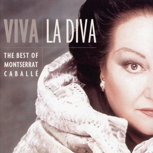 Viva La Diva by Various Artists