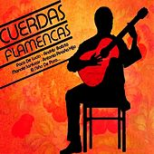 Cuerdas Flamencas by Various Artists