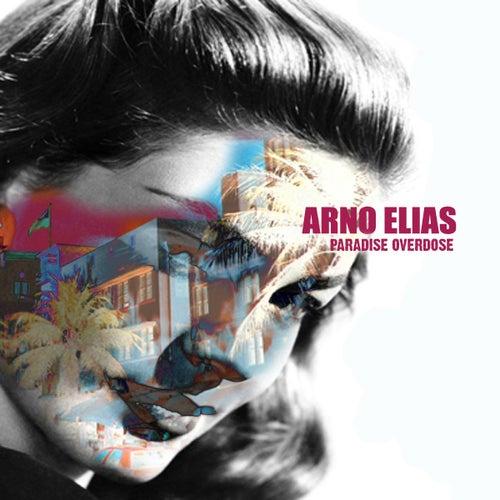 Paradise Overdose by Arno Elias