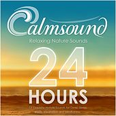 Relaxing Nature Sounds: 24 Hours of Exquisite Nature Sounds for Deep Sleep, Study, Meditation and Mindfulness by Calmsound
