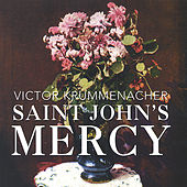 Saint John's Mercy by Victor Krummenacher
