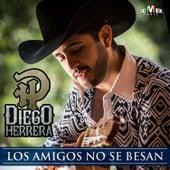 Los Amigos No Se Besan by Diego Herrera