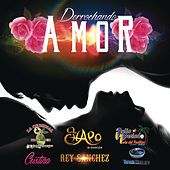 Derrochando Amor by Various Artists