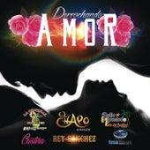 Derrochando Amor by Various Artists