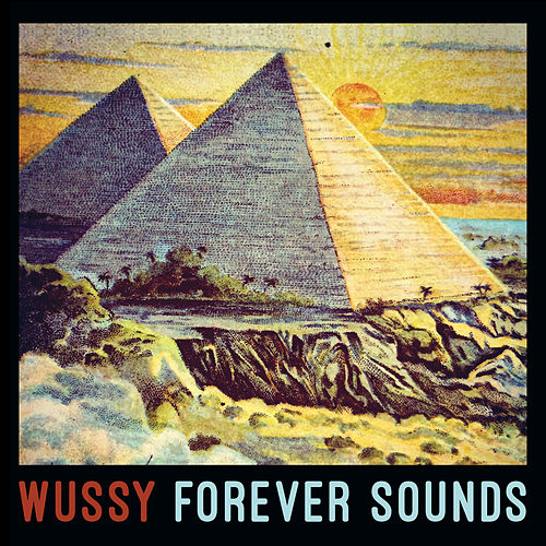 Forever Sounds by Wussy