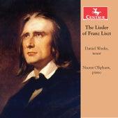 The Lieder of Franz Liszt by Daniel Weeks