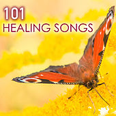101 Healing Songs - Deep Sleep Music with Sounds of Nature for Relaxation, New Age Meditation Sounds to Help You Relax and Meditate, Natural Spa White Noise for Reiki, Yoga, Massage and Sleeping by Various Artists