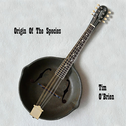 Origin Of Species by Tim O'Brien