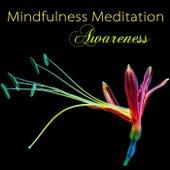 Mindfulness Meditation Awareness - Peaceful Music for Deep Zen Meditation & Well Being by Various Artists