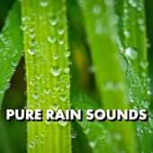 Pure Rain Sounds by Deep Sleep (1)