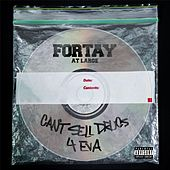 Cant Sell Drugs 4 Eva by Fortay