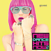 New Dance Hits Now Vol. 2 by Various Artists