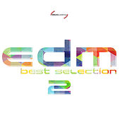 EDM Best Selection Vol. 2 by Various Artists
