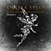 Angels Spell, Vol. 5 by Various Artists