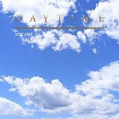 Daytime, Vol. 2 by Various Artists