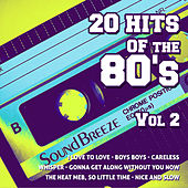 20 Hits Of The 80's, Vol. 2 by Various Artists