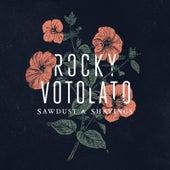 Sawdust & Shavings by Rocky Votolato