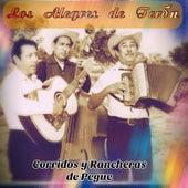 Corridos y Rancheras de Pegue by Los Alegres de Teran
