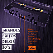 Grandes Éxitos de los 80's, Vol. 2 by Various Artists