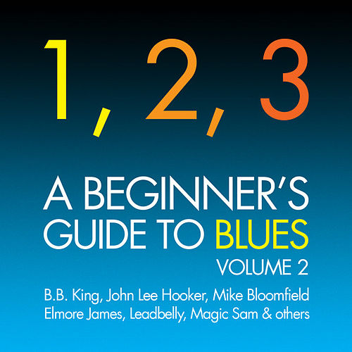 A Beginner's Guide To Blues Vol. 2 by Various Artists