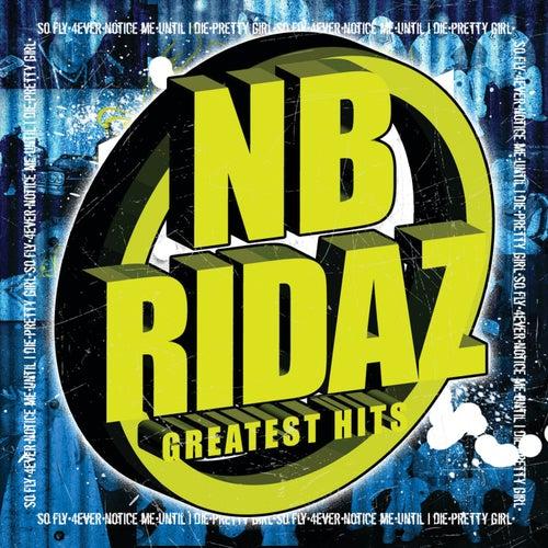 Greatest Hits by N.B.K.