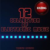 Collection of Electronic Music, Vol. 12 by Various Artists