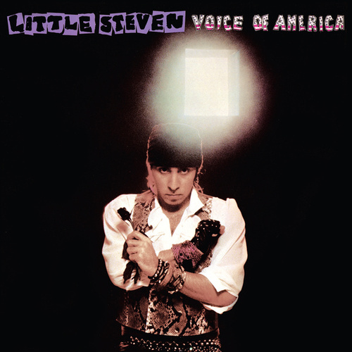 Voice Of America by Little Steven