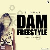 Dam Freestyle by Signal