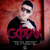 Te Fuiste by Gotay