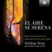 El aire se serena by Seldom Sene