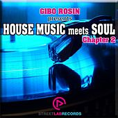 Gibo Rosin presents House Music meets Soul: Chapter 2 - EP by Various Artists