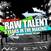 Raw Talent: 3 Years In The Makin' (2007-2010) - EP by Various Artists