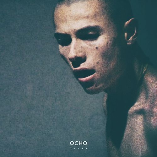 Vines by Ocho