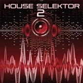 House Selektor, Vol. 2 by Various Artists