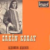 Nihansın Dideden (45'lik) by Erkin Koray