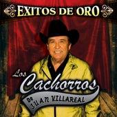 Ìäxitos de Oro by Los Cachorros de Juan Villareal
