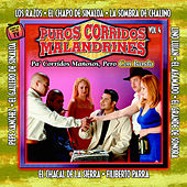 Puros Corridos Manosos, Vol. 4 by Various Artists