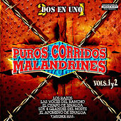 Puros Corridos Malandrines, Vol. 1 & 2 by Various Artists