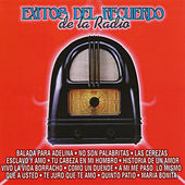 Exitos Del Recuerdo De La Radio by Various Artists