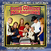 Puros Corridos Malandrines, Vol. 3 by Various Artists