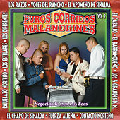 Puros Corridos Malanrines, Vol. 2 by Various Artists