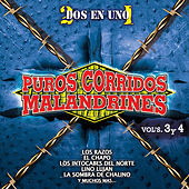 Puros Corridos Malandrines, Vol. 3 & 4 by Various Artists