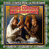 Puros Corridos Malandrines, Vol. 1 by Various Artists