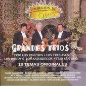 Coleccion De Oro 20 Temas Originales by Various Artists