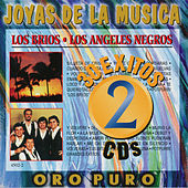 Joyas De La Musica 30 Exitos by Various Artists