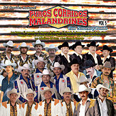 Puros Corridos Malandrines, Vol. 5 by Various Artists