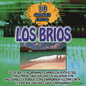 10 Grandes Exitos by Los Brios