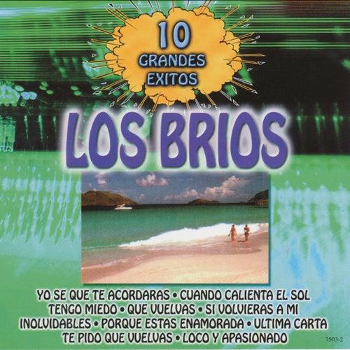 10 Grandes Exitos by Los Brios