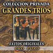 Grandes Trios Coleccion Privada by Various Artists