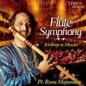 Flute Symphony by Pandit Ronu Majumdar